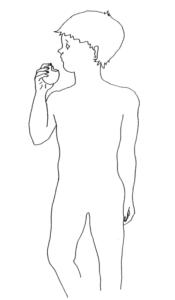 La digestion : c'est quoi ?